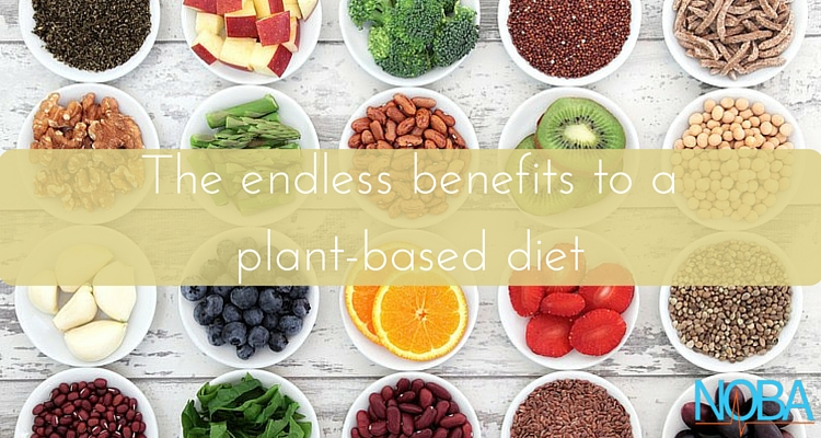 The-endless-benefits-to-a-plant-based-diet-1