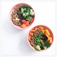 Earth bowl- vegan dinner
